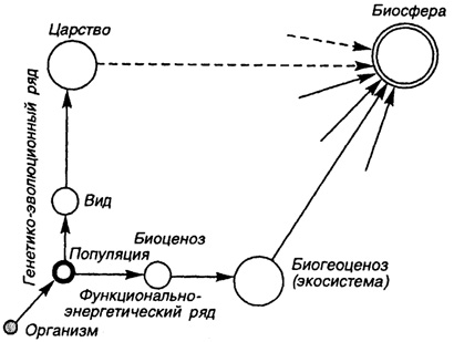 в структуре биологических