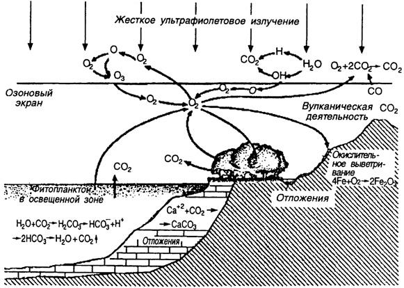 Круговорот кислорода в