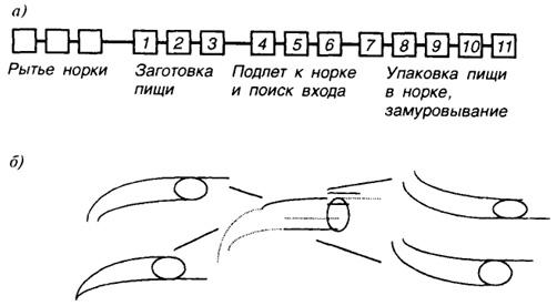 http://bibl.tikva.ru/base/B1706/img/B1706p48-1.jpg