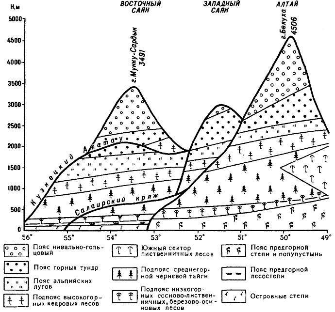Схема высотной поясности