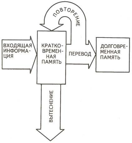 Схема памяти по Р.Аткинсону и